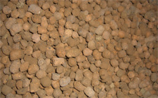 expanded clay for building and insulation